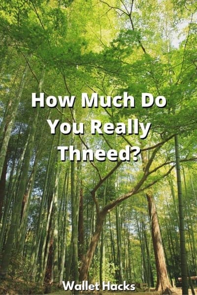 How Much Do You Thneed-