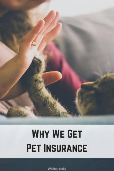Why We Buy Pet Insurance