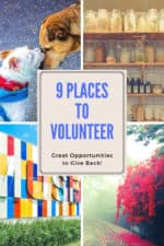 Are you looking for great volunteering opportunities and organizations? We look at some great places to consider donating your time!
